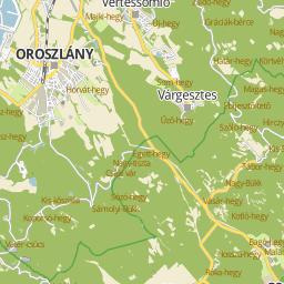 oroszlány térkép Utcakereso.hu Oroszlány   Tulipán utca térkép oroszlány térkép
