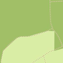 cserdi térkép Utcakereso.hu Cserdi   Nyárfa utca térkép cserdi térkép